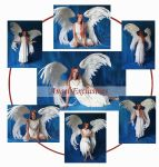 Angel Exclusives by mizzd-stock