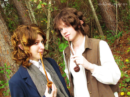 Pippin and Frodo by clockworkcosplay