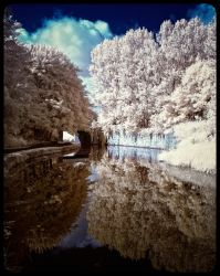 Down the Canal III by Liam-diamond