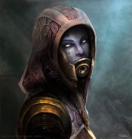 Tali'Zorah Vas Normandy by stevegoad