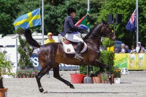 3DE Show Jumping Phase Stock 5 by LuDa-Stock