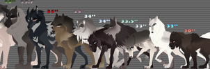 Dotw Character Height chart by Jaeggy