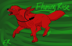 Flaming Rose - Fire's Flower by littlezombiesol