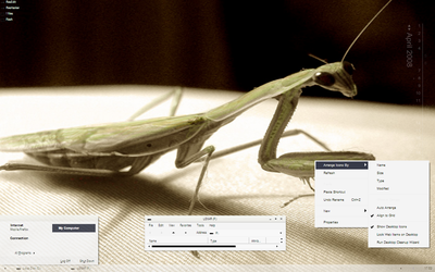 mantis by air-canada
