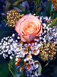 Rose Bouquet - Unlimited STOCK by Lilyas