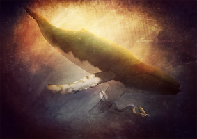 Tales from the Sea by tamaraR