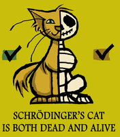 Schrodinger's Cat by atoji