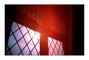 lomographic windowsill by redux
