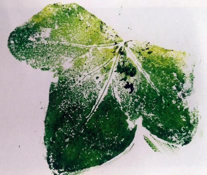 Large Ivy print by Wildlioness3