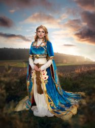 Princess Zelda - Breath of the Wild by HannahEva
