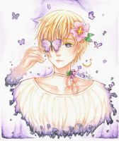 APH Norway ~Purple star~ by MiyajiYukki
