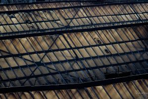 Rooftops by no-trespassing
