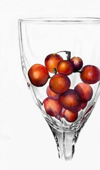 Grapes and Glass by Noomelo