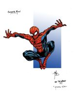 SpiderMan in color by TheWarsh