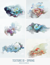 Pack Texture - Spring by MeiCures