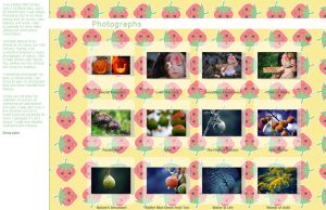 Strawberry Gallery CSS V2 by Zinnia-Aster