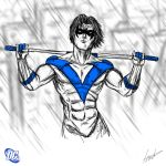 Heroes Series: NIGHTWING by LouizBrito