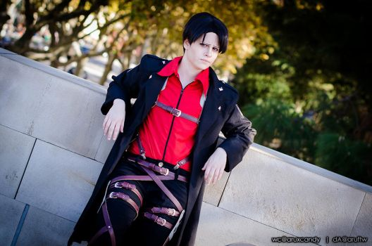 Levi: wings of counter attack II by aruftw