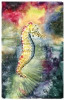 Sea horse by Docali