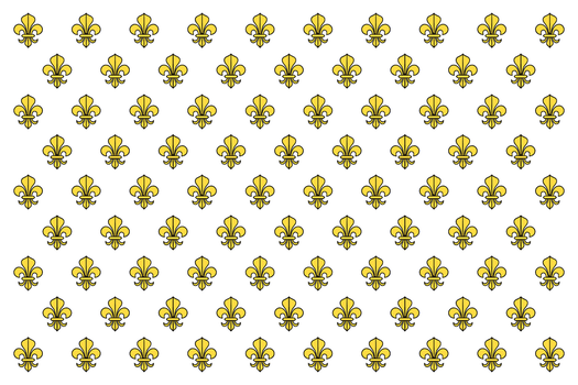 Flag of the Kingdom of France (German puppet) by DemianShab