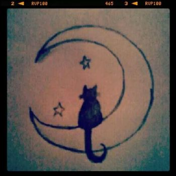 Cat in the moon by sintha