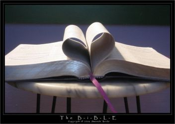 The Bible - s15JesusFreak by christians