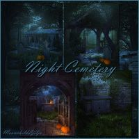 Night Cemetery backgrounds by moonchild-ljilja