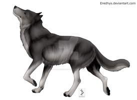 WP Black Husky by TheWildOne-Arts