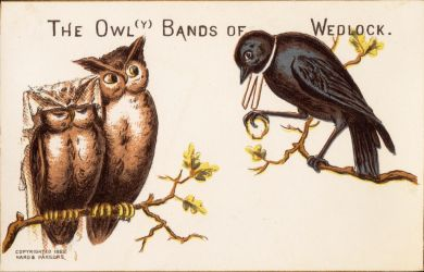 The Owl(y) Bands of Wedlock by Yesterdays-Paper