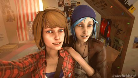Pricefield selfie slideshow by nicefieldSFM