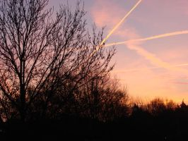 week 5 - sky of a new day by Rosens