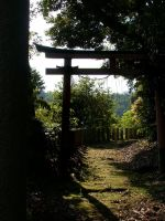 Afternoon Torii by ArtLoDesigns