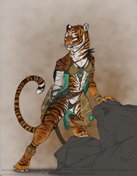 Design Auction: Shaman by TaesoSpiritDragon