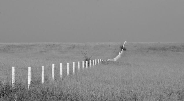 Rolling Plains Rolling Fences by rongiveans