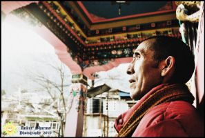 The Monk who sold his Ferrari by smilingsun08