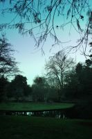 Dusk by the pond 2 by CathleenTarawhiti