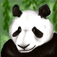 Panda by Dezfezable