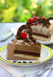 Cake Slices - Cappuccino Mousse Cake by theresahelmer