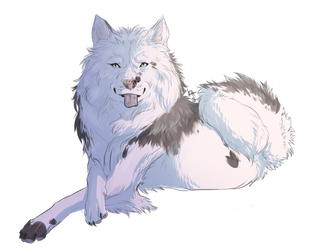 Cao the Wolf Hybrid [Personal] by Kientrae