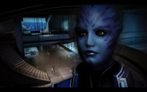 Mass Effect 2 Tela by AgataFoxxx