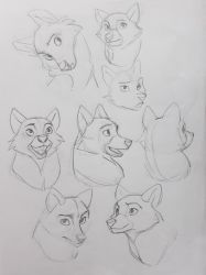 Vixen sketches by Shagan-fury