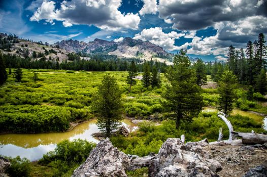 Summer in Indian Valley by StephGabler