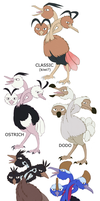 Dodrio variations