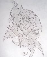 Rose by Bainal