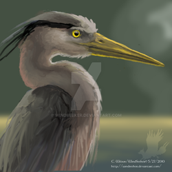 Speedpainting - GB Heron by WindSeeker