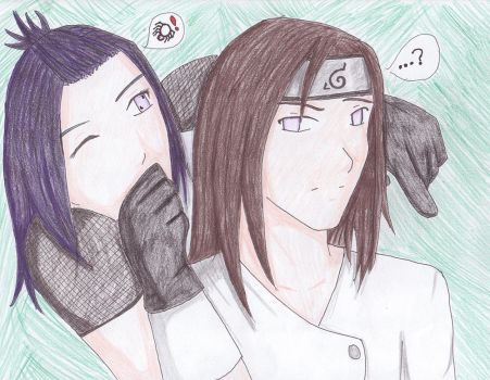 Are you a ninja or not? by liika