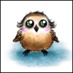 Lovely owl by maryallen138