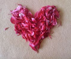 Petals- Heart by Aninsey