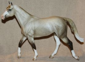 Breyer - Caipirinha - Stock by Lovely-DreamCatcher