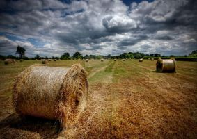 Summer Haymaking by ArwensGrace